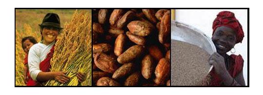 Fair Trade verbetert levensstandaard van boeren
