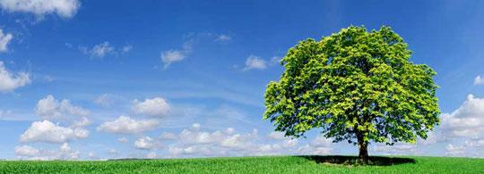 De nationale duurzaamheidsdag