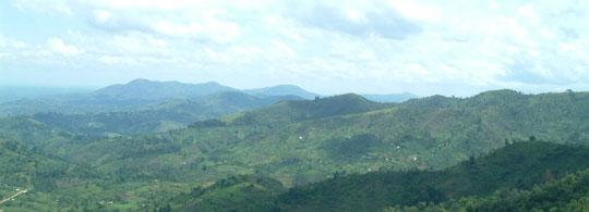 rwanda-bos